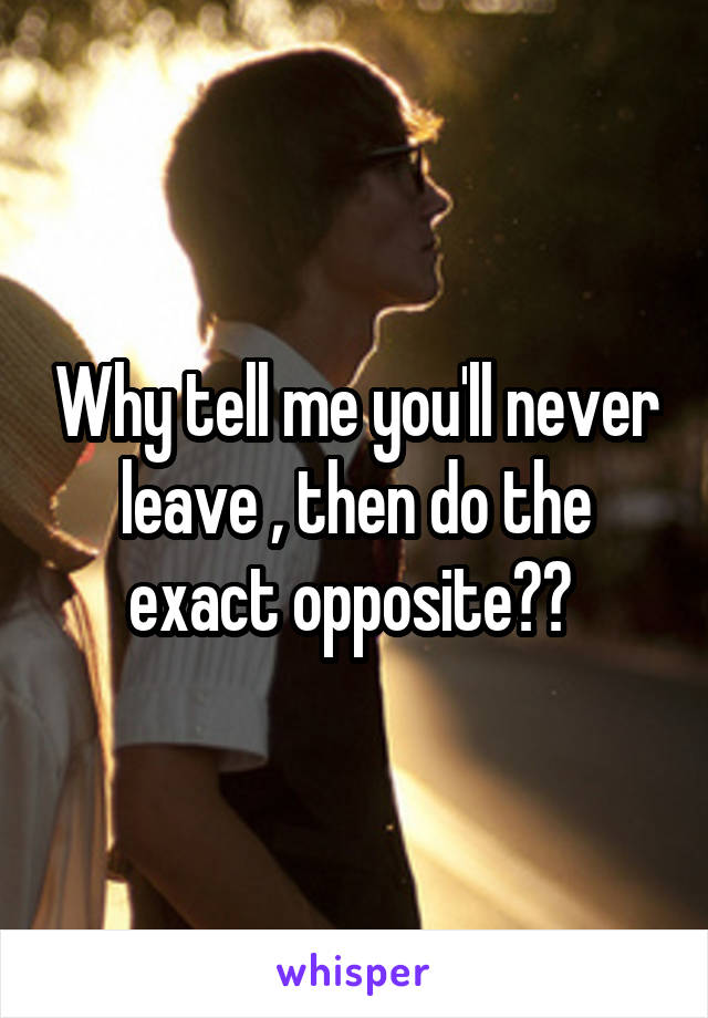Why tell me you'll never leave , then do the exact opposite??
