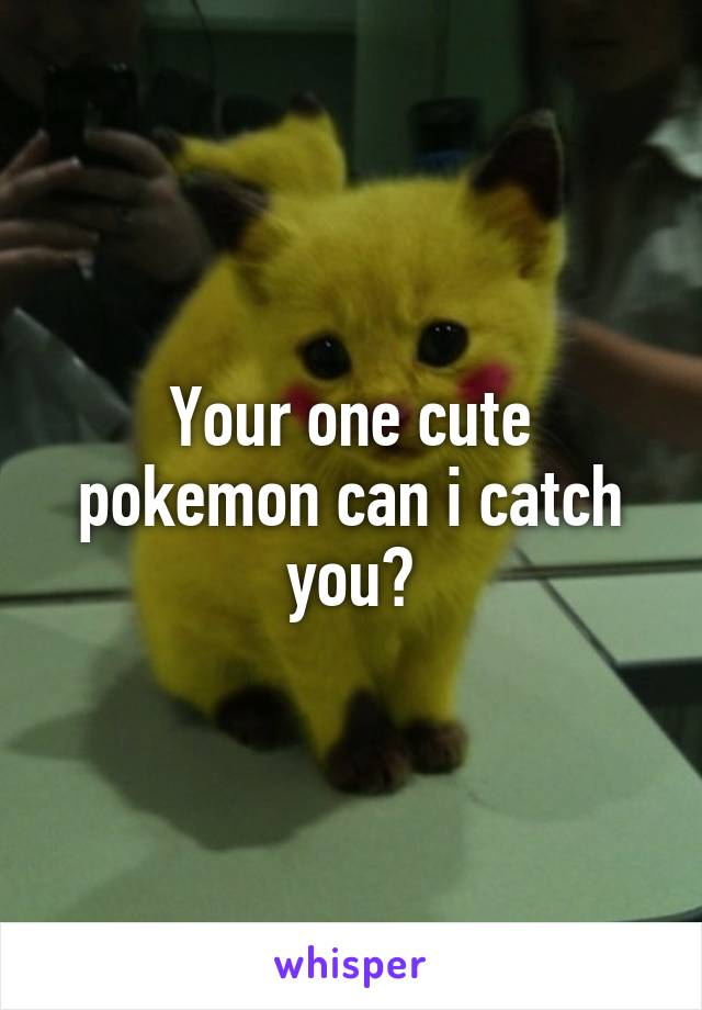 Your one cute pokemon can i catch you?
