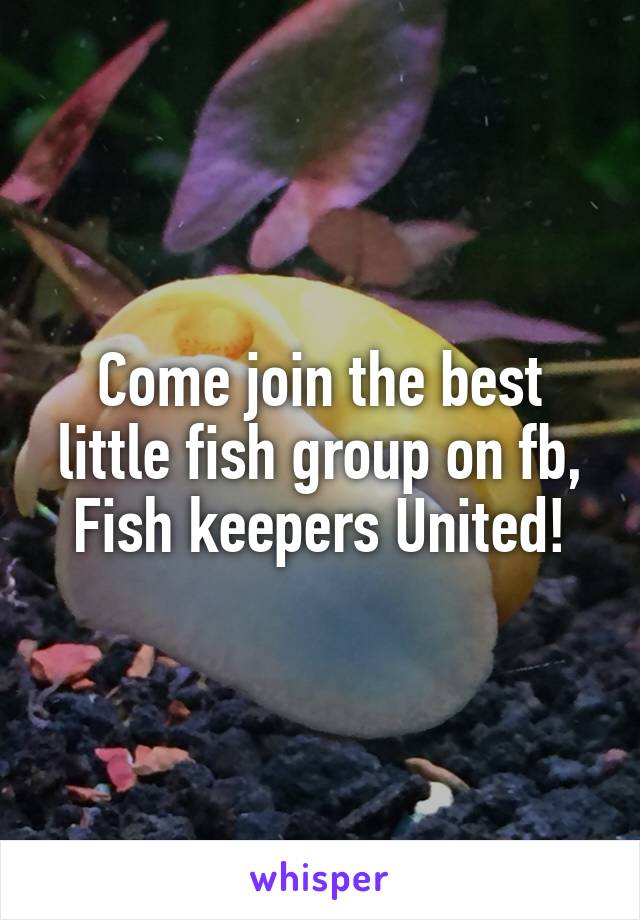 Come join the best little fish group on fb, Fish keepers United!