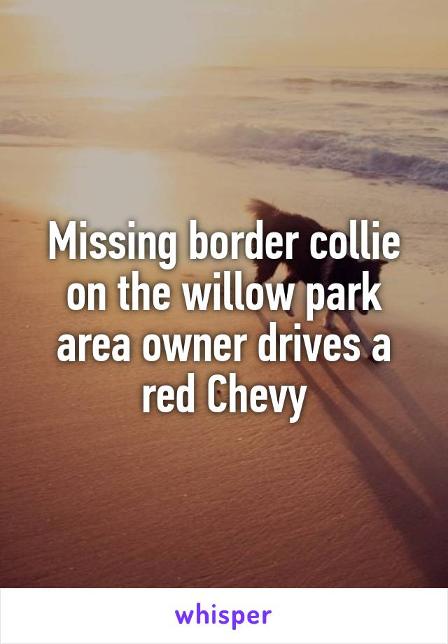 Missing border collie on the willow park area owner drives a red Chevy