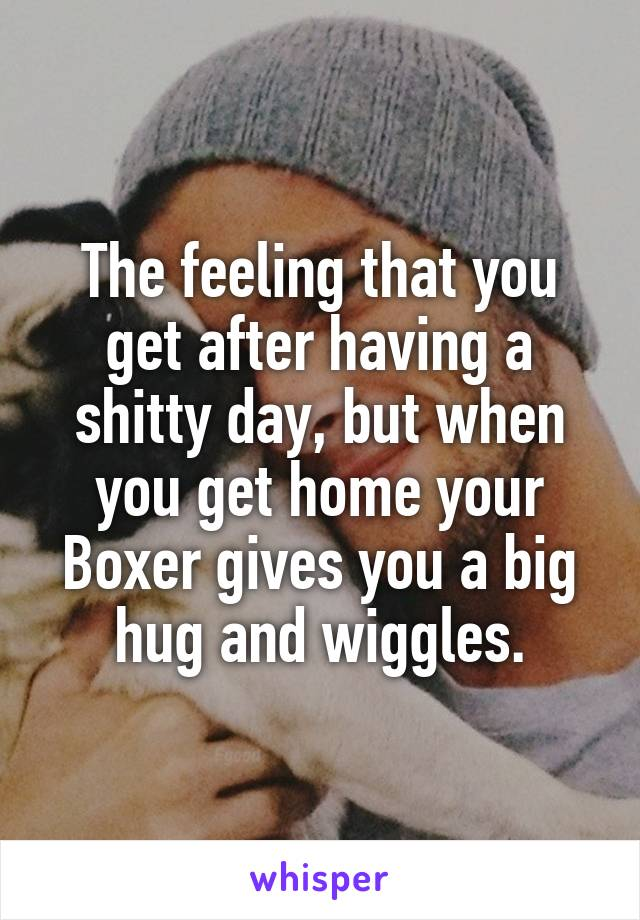 The feeling that you get after having a shitty day, but when you get home your Boxer gives you a big hug and wiggles.