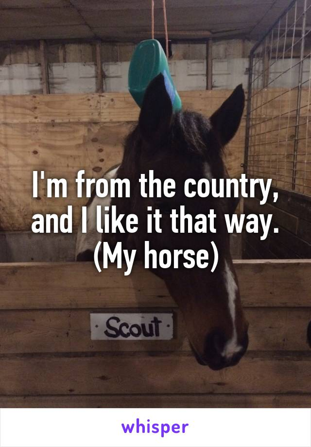 I'm from the country, and I like it that way. (My horse)