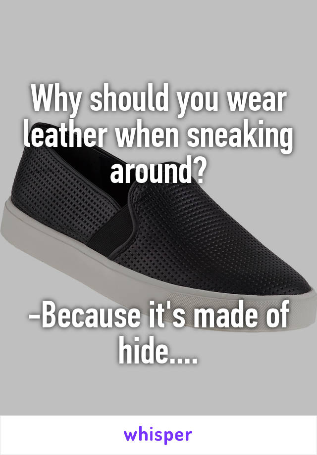 Why should you wear leather when sneaking around?    -Because it's made of hide....