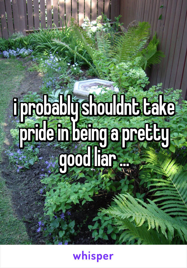 i probably shouldnt take pride in being a pretty good liar ...