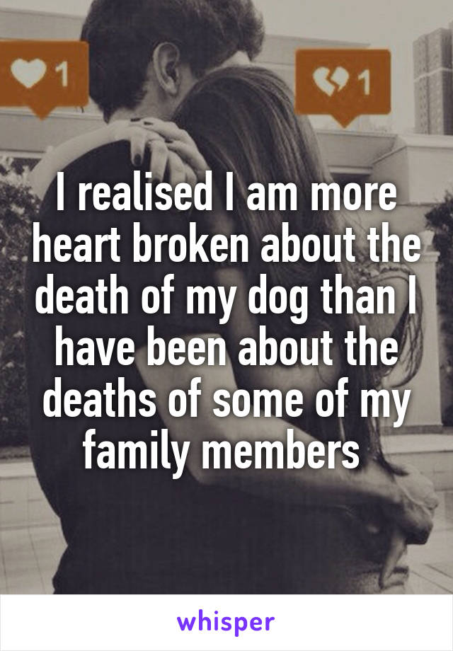 I realised I am more heart broken about the death of my dog than I have been about the deaths of some of my family members
