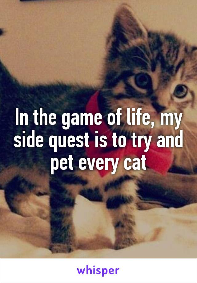 In the game of life, my side quest is to try and pet every cat
