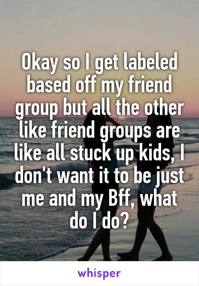 Okay so I get labeled based off my friend group but all the other like friend groups are like all stuck up kids, I don't want it to be just me and my Bff, what do I do?