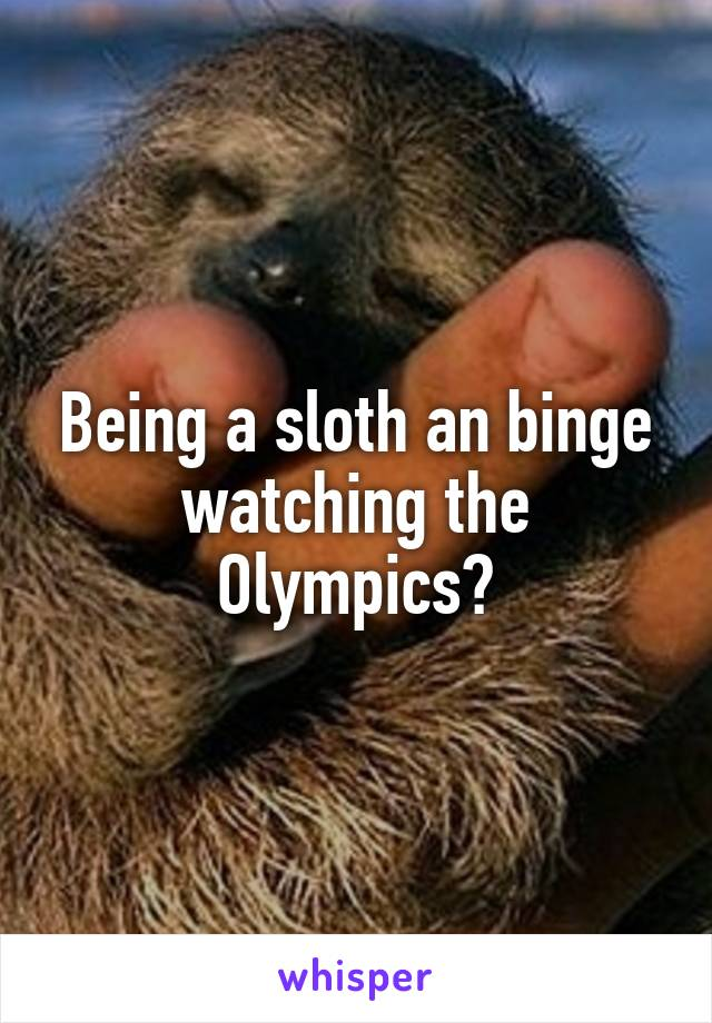 Being a sloth an binge watching the Olympics?