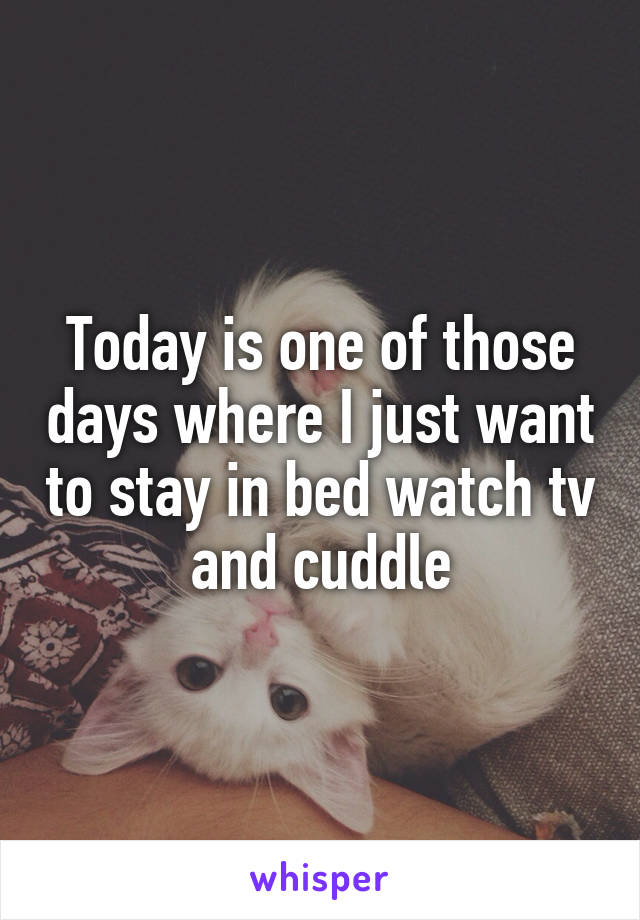 Today is one of those days where I just want to stay in bed watch tv and cuddle