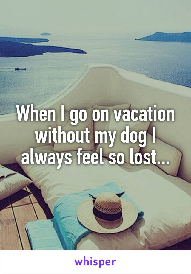When I go on vacation without my dog I always feel so lost...