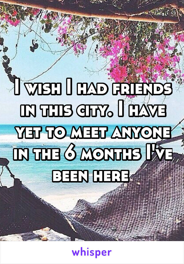I wish I had friends in this city. I have yet to meet anyone in the 6 months I've been here