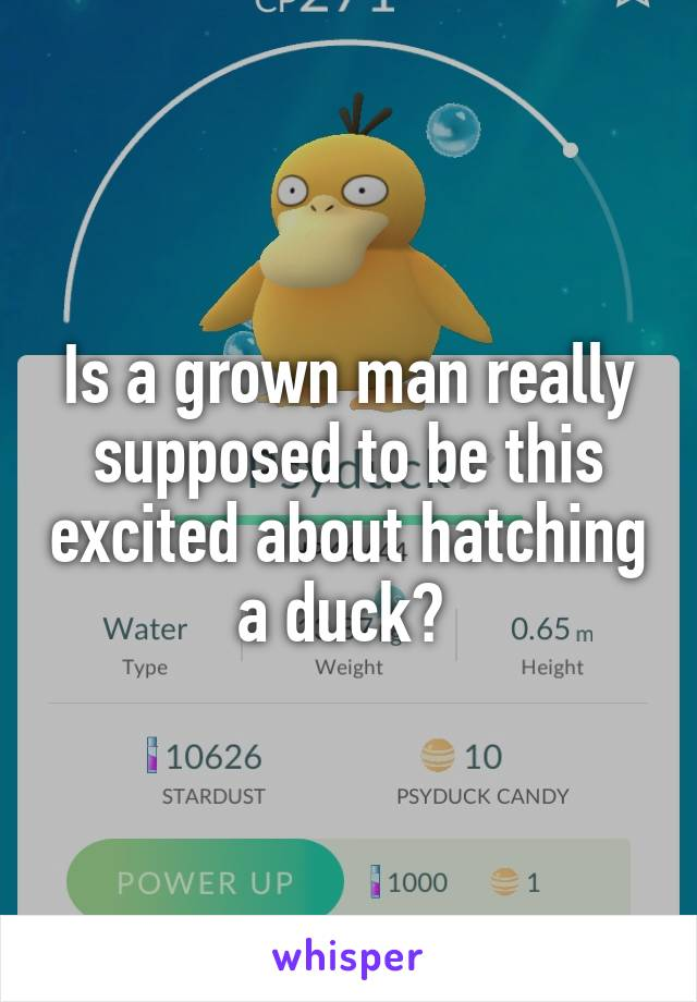 Is a grown man really supposed to be this excited about hatching a duck?