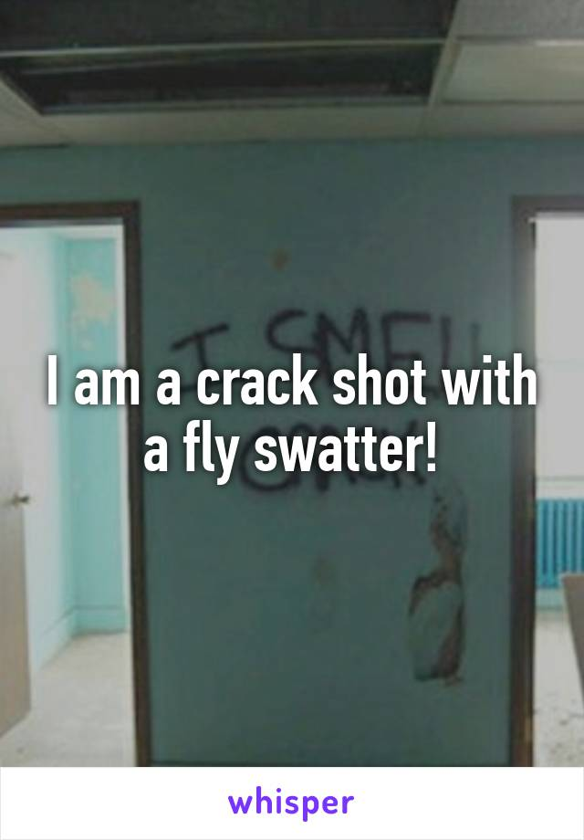 I am a crack shot with a fly swatter!