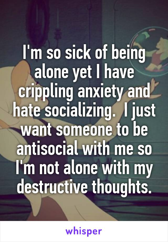 I'm so sick of being alone yet I have crippling anxiety and hate socializing.  I just want someone to be antisocial with me so I'm not alone with my destructive thoughts.