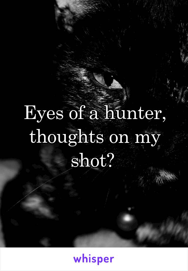 Eyes of a hunter, thoughts on my shot?