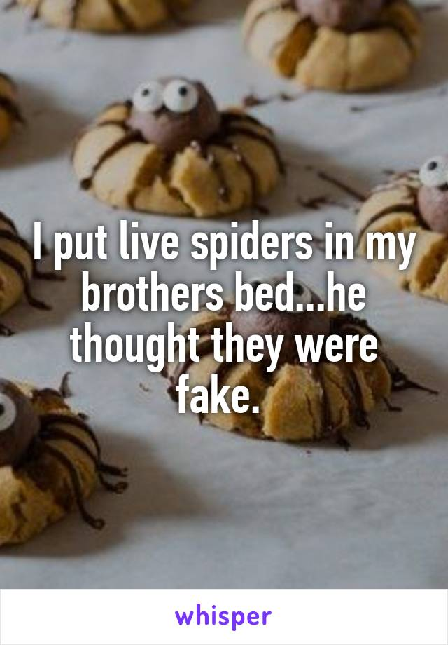 I put live spiders in my brothers bed...he thought they were fake.