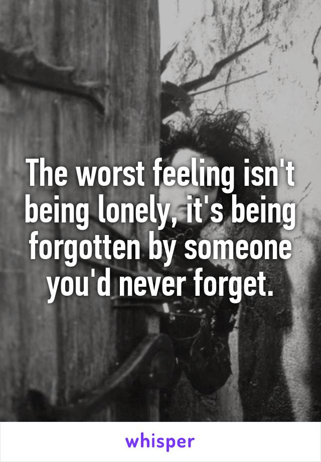 The worst feeling isn't being lonely, it's being forgotten by someone you'd never forget.