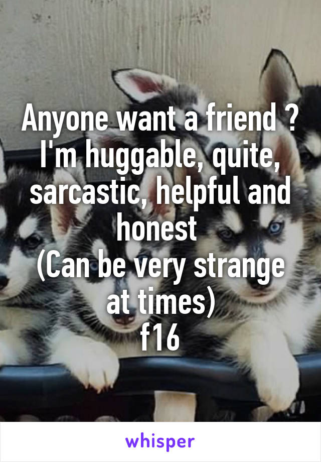 Anyone want a friend ? I'm huggable, quite, sarcastic, helpful and honest  (Can be very strange at times) f16