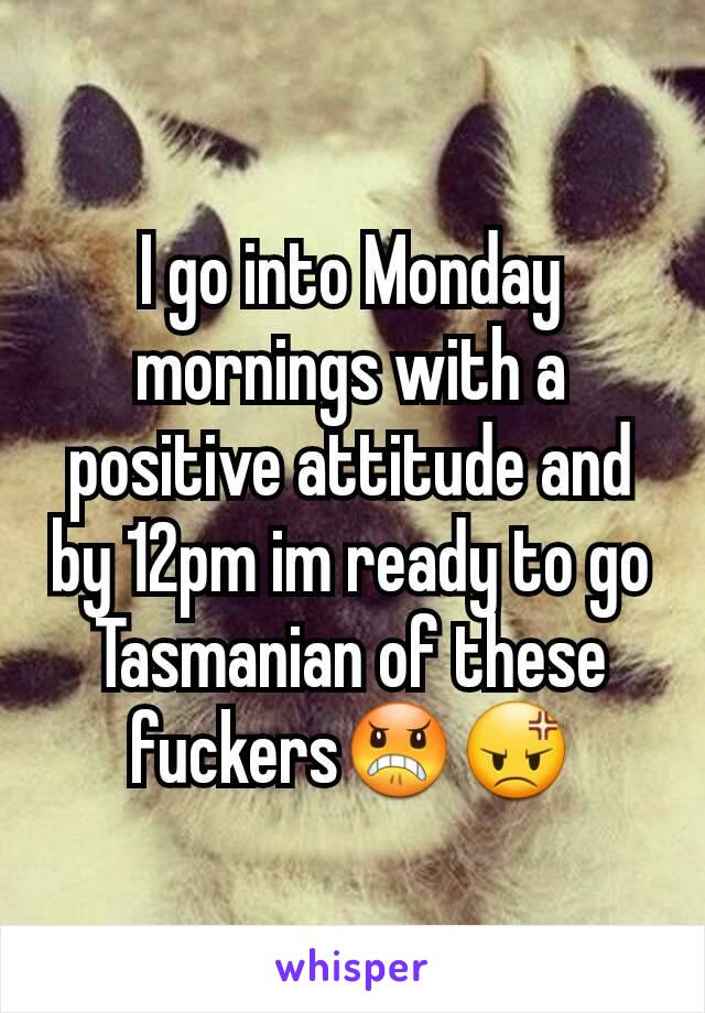I go into Monday mornings with a positive attitude and by 12pm im ready to go Tasmanian of these fuckers😠😡