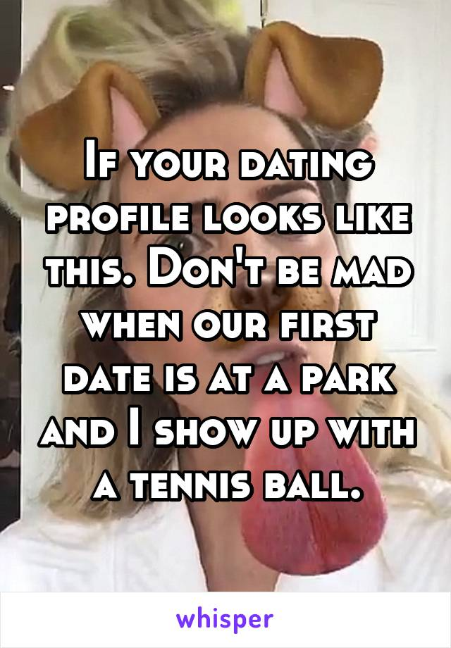 If your dating profile looks like this. Don't be mad when our first date is at a park and I show up with a tennis ball.