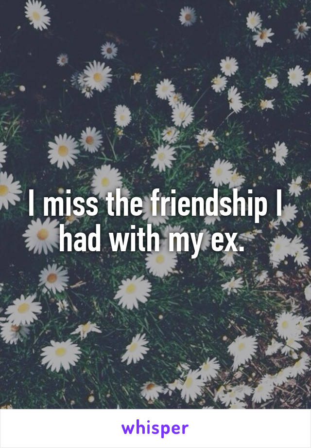 I miss the friendship I had with my ex.
