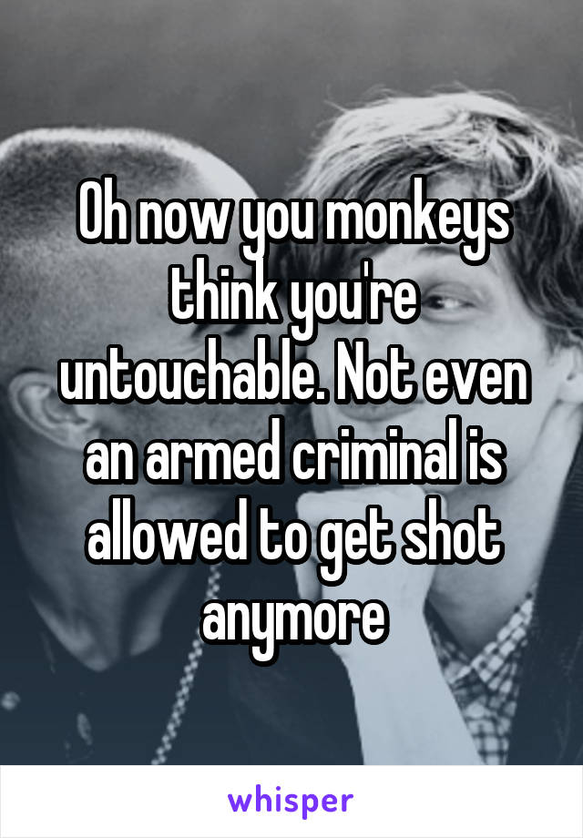 Oh now you monkeys think you're untouchable. Not even an armed criminal is allowed to get shot anymore