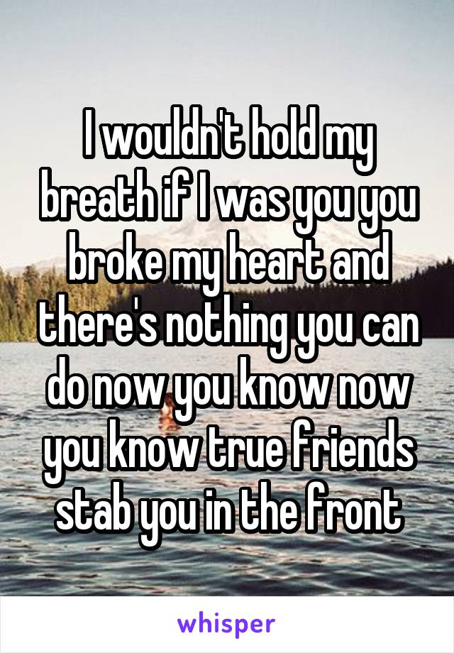 I wouldn't hold my breath if I was you you broke my heart and there's nothing you can do now you know now you know true friends stab you in the front
