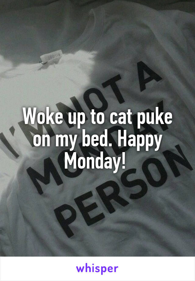 Woke up to cat puke on my bed. Happy Monday!