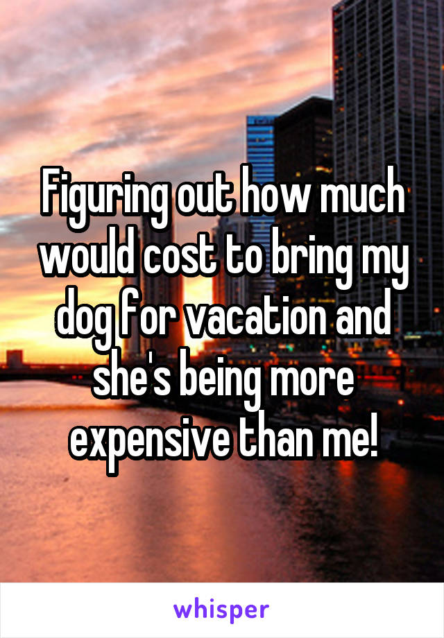 Figuring out how much would cost to bring my dog for vacation and she's being more expensive than me!