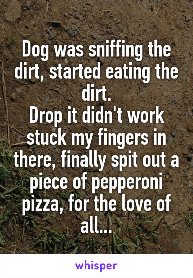 Dog was sniffing the dirt, started eating the dirt. Drop it didn't work stuck my fingers in there, finally spit out a piece of pepperoni pizza, for the love of all...