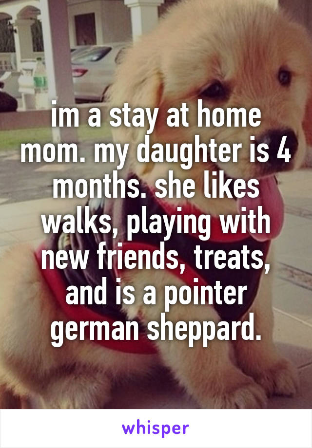 im a stay at home mom. my daughter is 4 months. she likes walks, playing with new friends, treats, and is a pointer german sheppard.