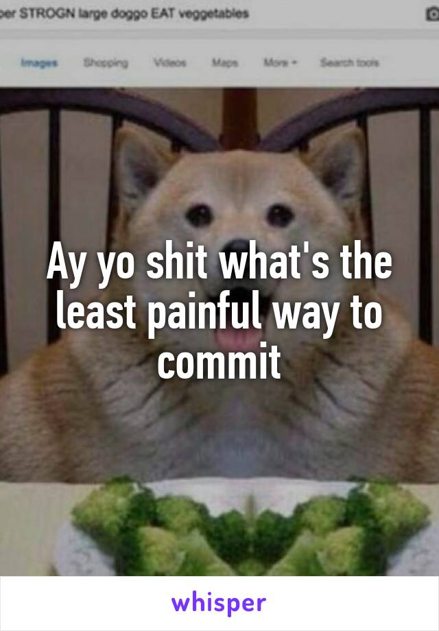 Ay yo shit what's the least painful way to commit