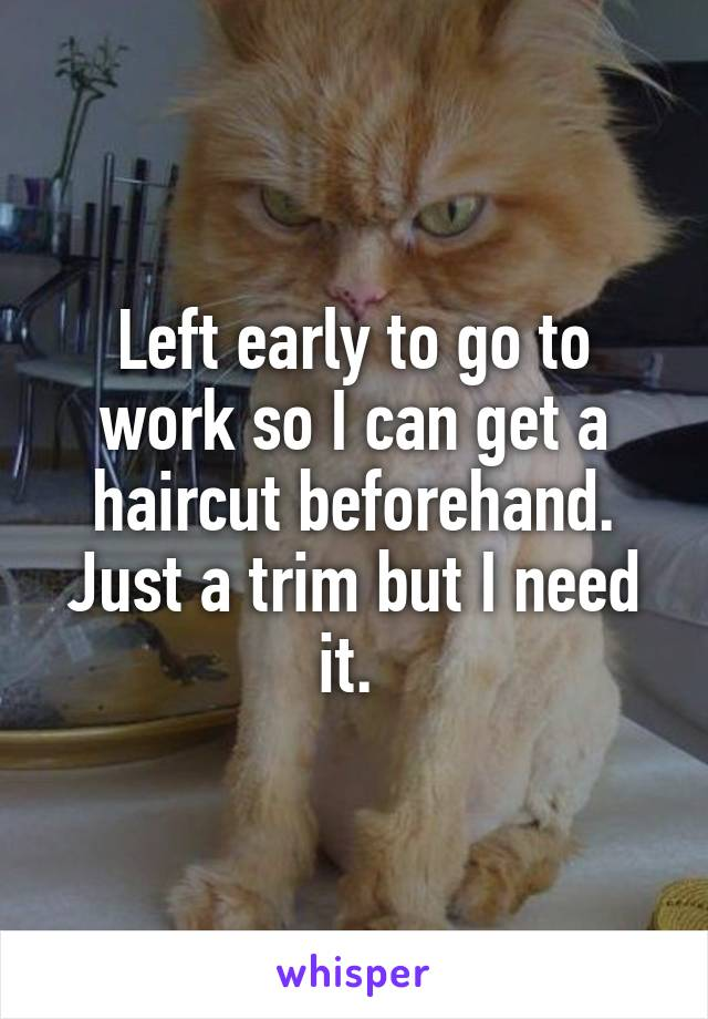 Left early to go to work so I can get a haircut beforehand. Just a trim but I need it.
