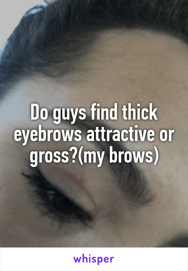 Do Guys Find Thick Eyebrows Attractive Or Grossmy Brows