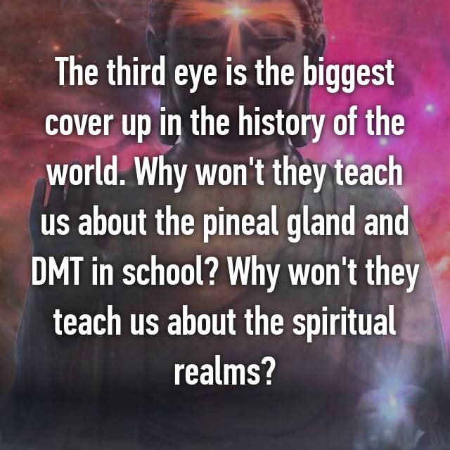 The third eye is the biggest cover up in the history of the world. Why won't they teach us about the pineal gland and DMT in school? Why won't they teach us about the spiritual realms?