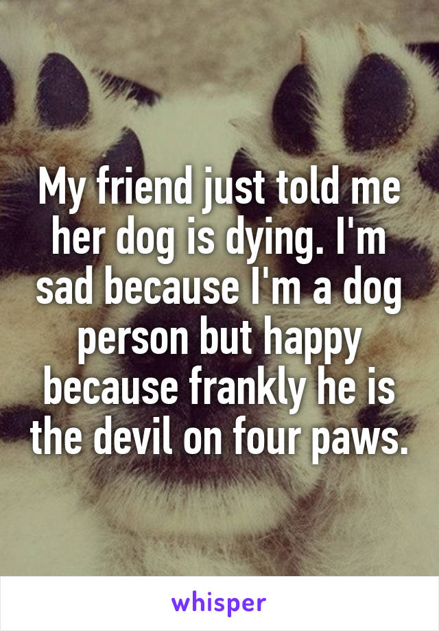 My friend just told me her dog is dying. I'm sad because I'm a dog person but happy because frankly he is the devil on four paws.