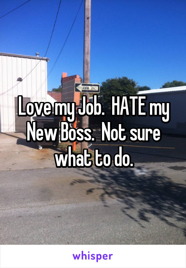 Love my Job.  HATE my New Boss.  Not sure what to do.