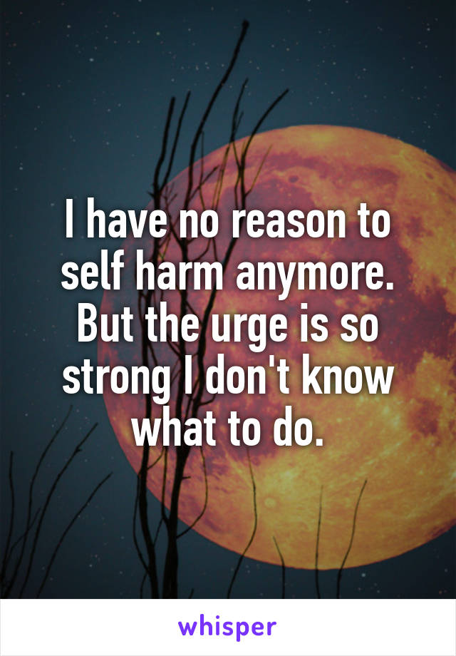 I have no reason to self harm anymore. But the urge is so strong I don't know what to do.