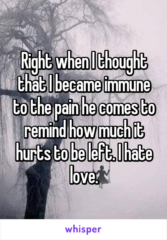 Right when I thought that I became immune to the pain he comes to remind how much it hurts to be left. I hate love.