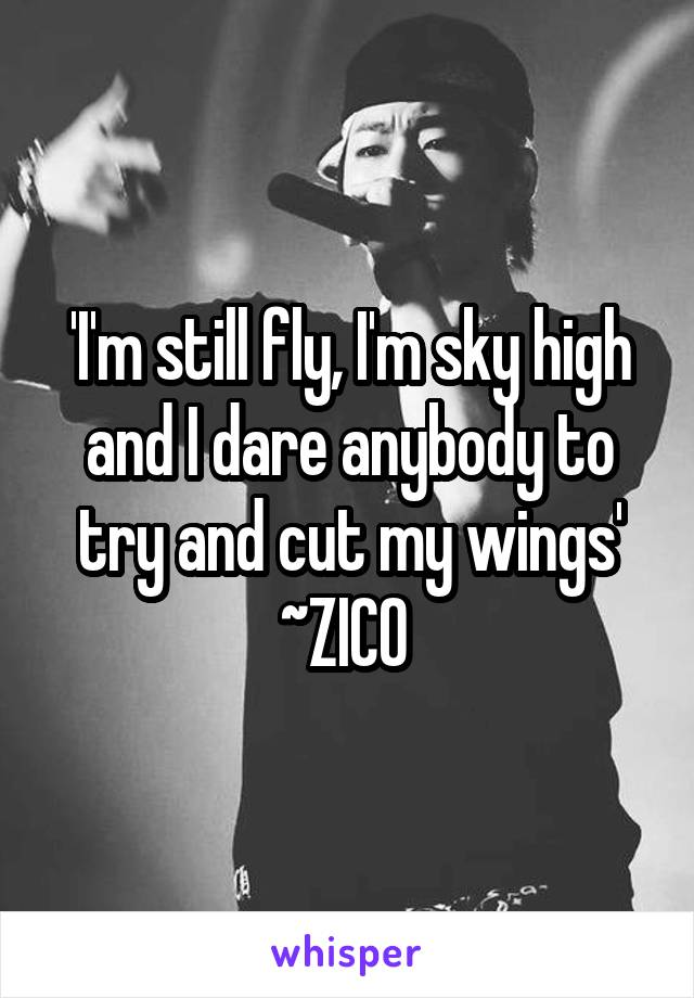 'I'm still fly, I'm sky high and I dare anybody to try and cut my wings' ~ZICO