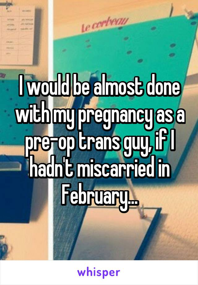 I would be almost done with my pregnancy as a pre-op trans guy, if I hadn't miscarried in February...