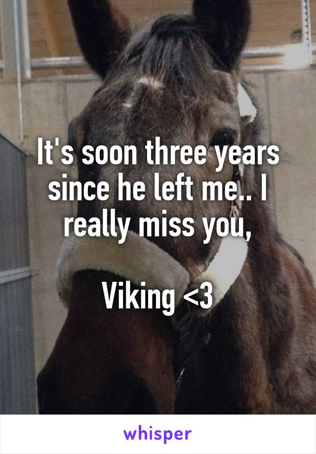 It's soon three years since he left me.. I really miss you,  Viking <3