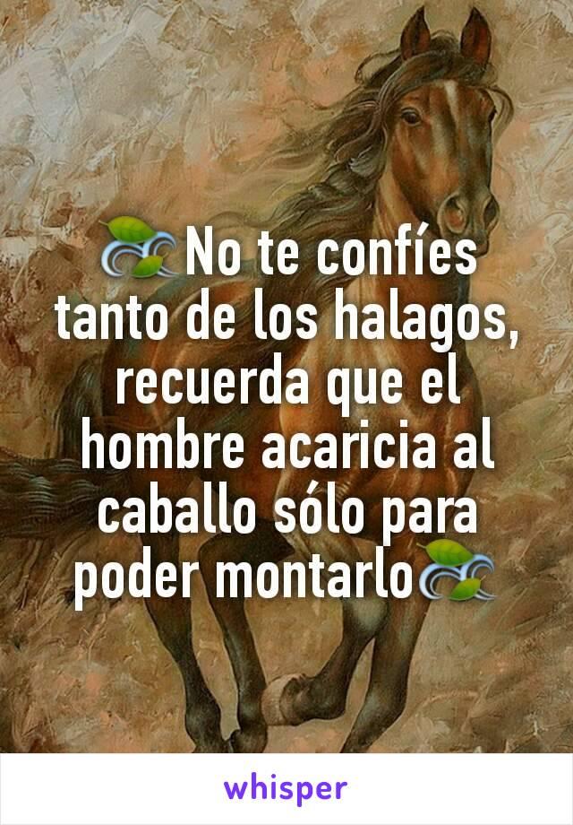 🍃No te confíes tanto de los halagos, recuerda que el hombre acaricia al caballo sólo para poder montarlo🍃