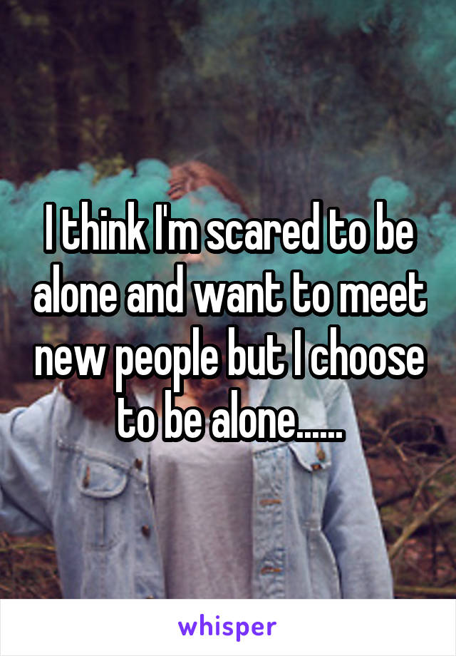 I think I'm scared to be alone and want to meet new people but I choose to be alone......