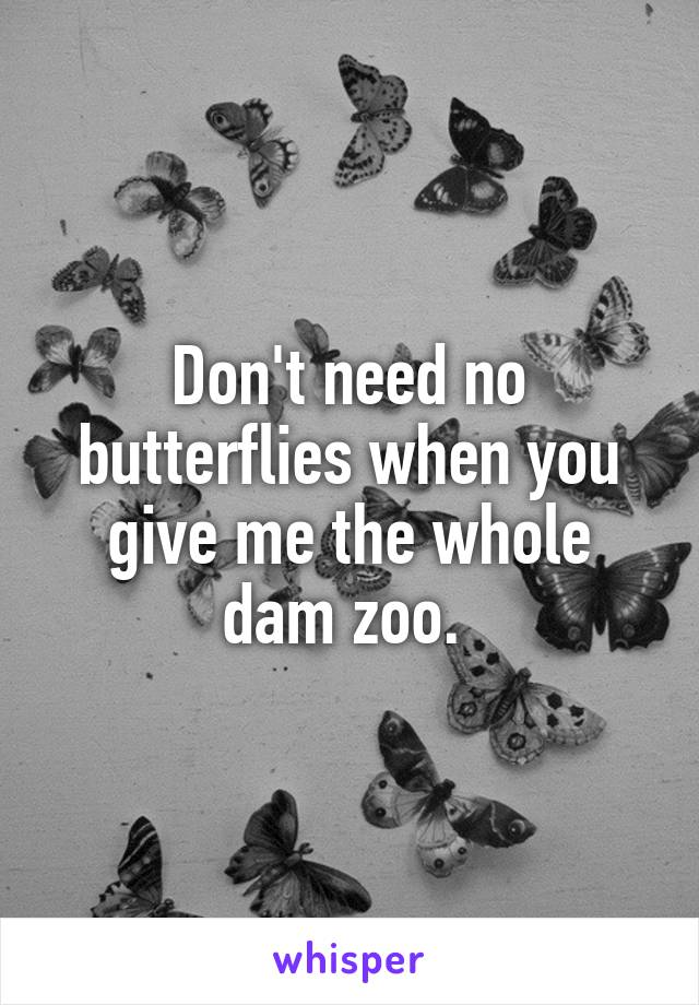 Don't need no butterflies when you give me the whole dam zoo.
