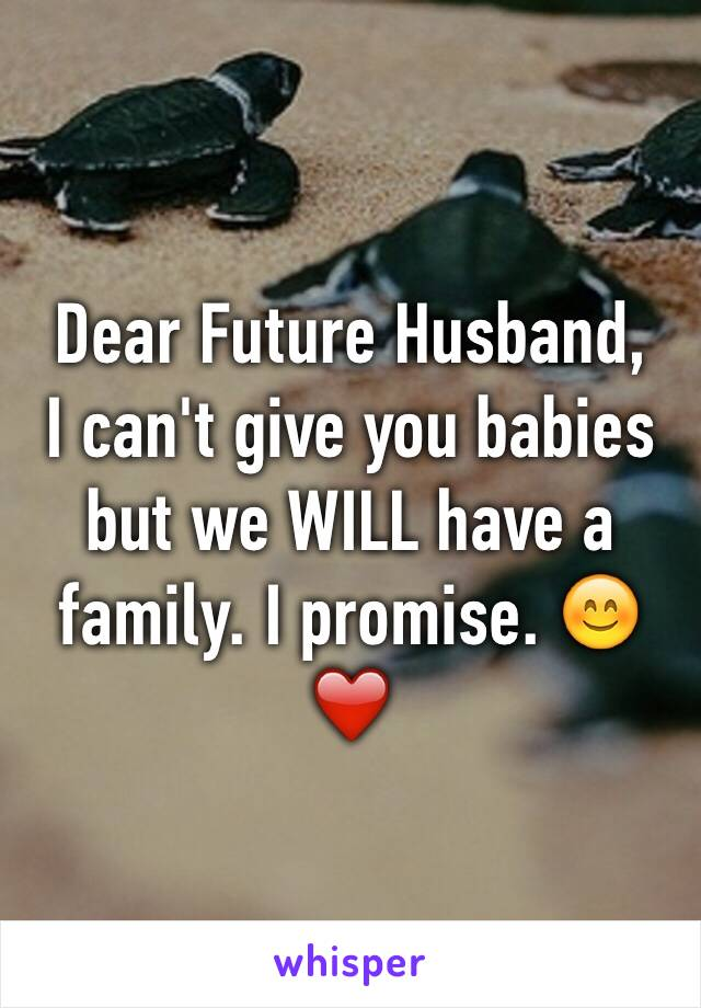 Dear Future Husband, I can't give you babies but we WILL have a family. I promise. 😊❤️