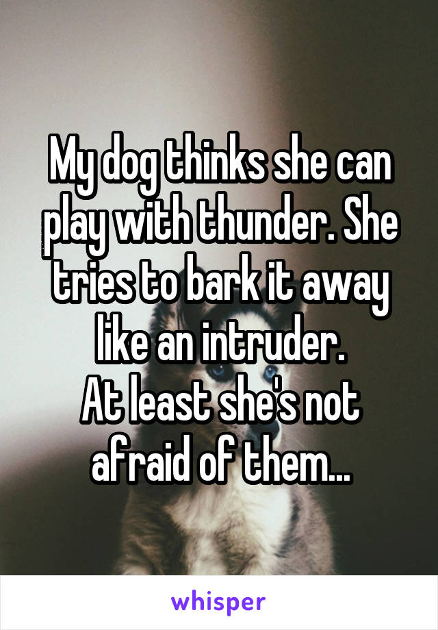 My dog thinks she can play with thunder. She tries to bark it away like an intruder. At least she's not afraid of them...
