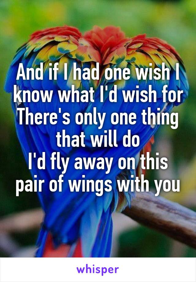 And if I had one wish I know what I'd wish for There's only one thing that will do I'd fly away on this pair of wings with you