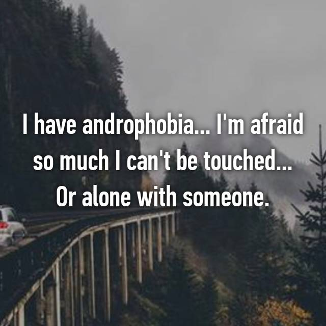 I have androphobia... I'm afraid so much I can't be touched... Or alone with someone.