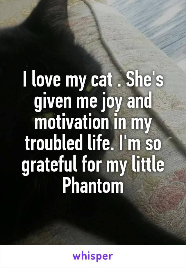 I love my cat . She's given me joy and motivation in my troubled life. I'm so grateful for my little Phantom